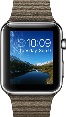 Actual size image of  Apple Watch (42mm) .