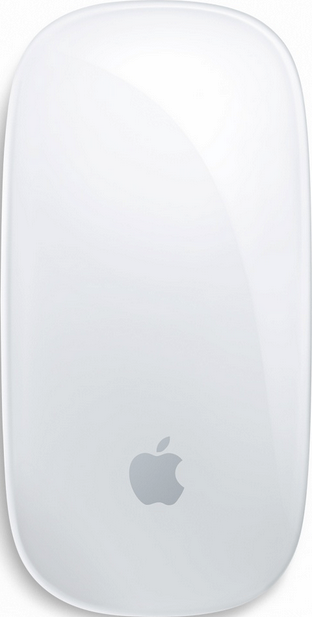 Actual size image of  Magic Mouse .